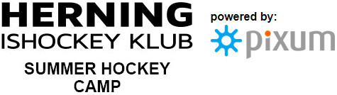 sønderjyske ishockey spillertrup